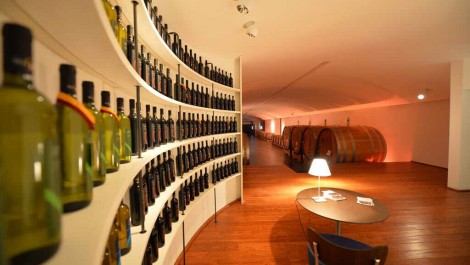 Italian Winery and Vineyard for Sale