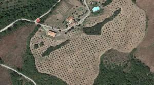Tuscany Agriturismo and Farm