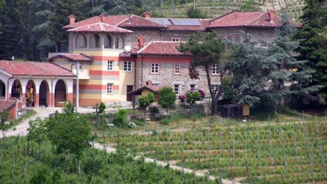 Piedmont Italy Vineyard B&B For Sale