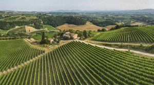 Tuscany Development Opportunity