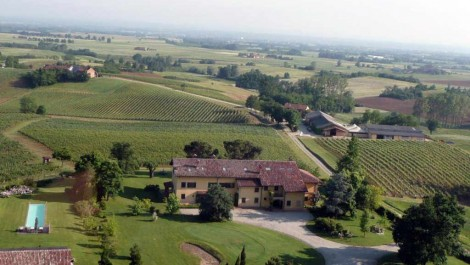 Wine Estate and Vineyards for sale in Italy
