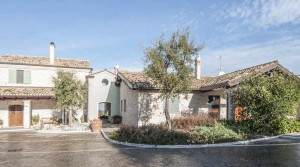 Small vineyard for sale in Italy
