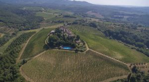 Chianti Classico medieval castle and winery, vineyards, olive grove