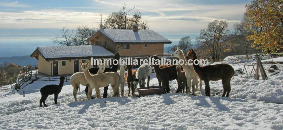 Oasi Zegna Piedmont Property