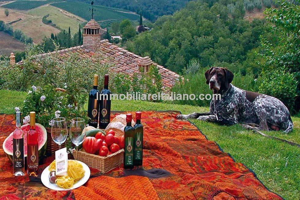 Wine and Farm Estate
