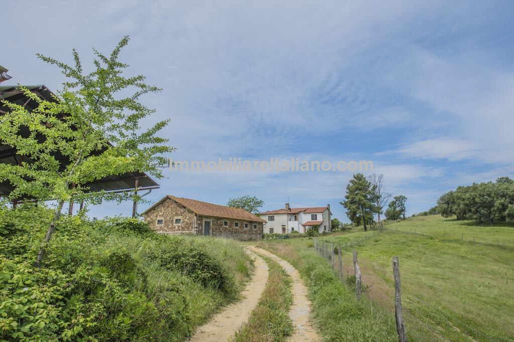 Vineyard Real Estate