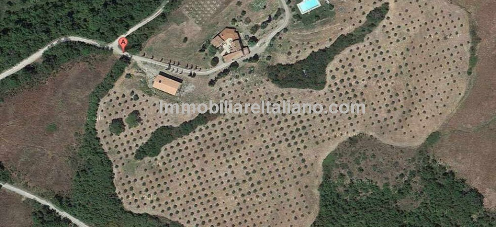 Tuscany agriturismo and farm for sale