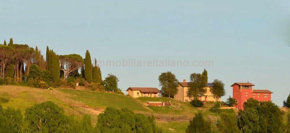 Organic Agriturismo Umbria For Sale
