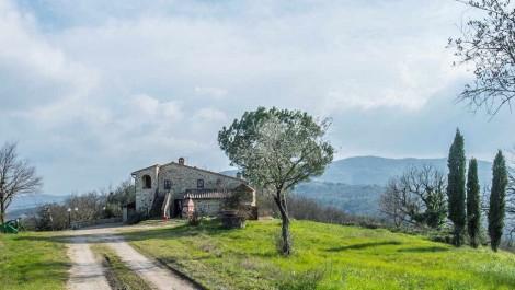 Casole d'Elsa Tuscan Wine Property