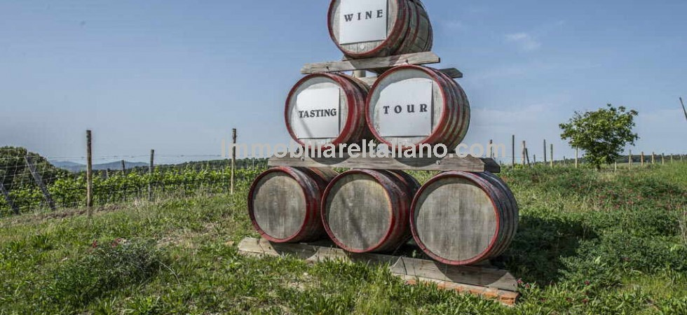 Productive winery with accommodation business in the the world famous Tuscan Chianti Classico region. Period manor villa, agriturismo, restaurant, wine shop, winery and private Hunting Reserve for sale in Tuscany, less than half an hour from Florence.