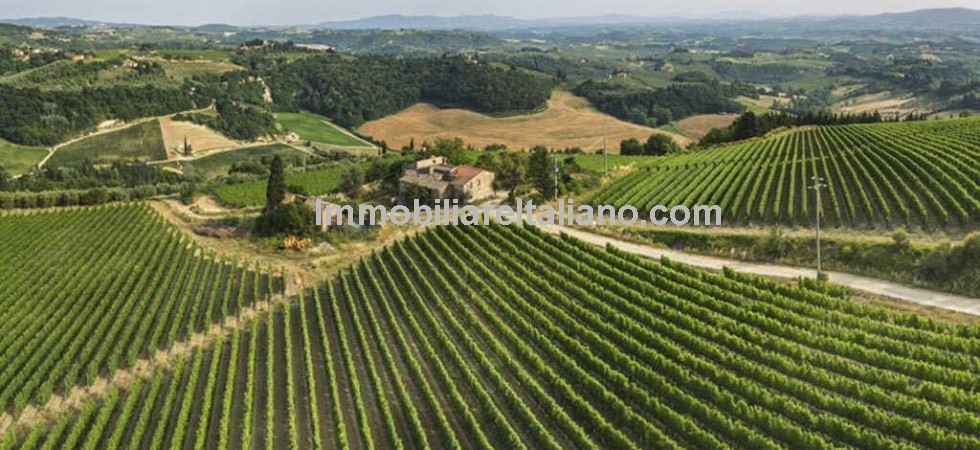 Working wine and olive oil producing estate and accommodation business in Tuscany which also provides an interesting property development opportunity.