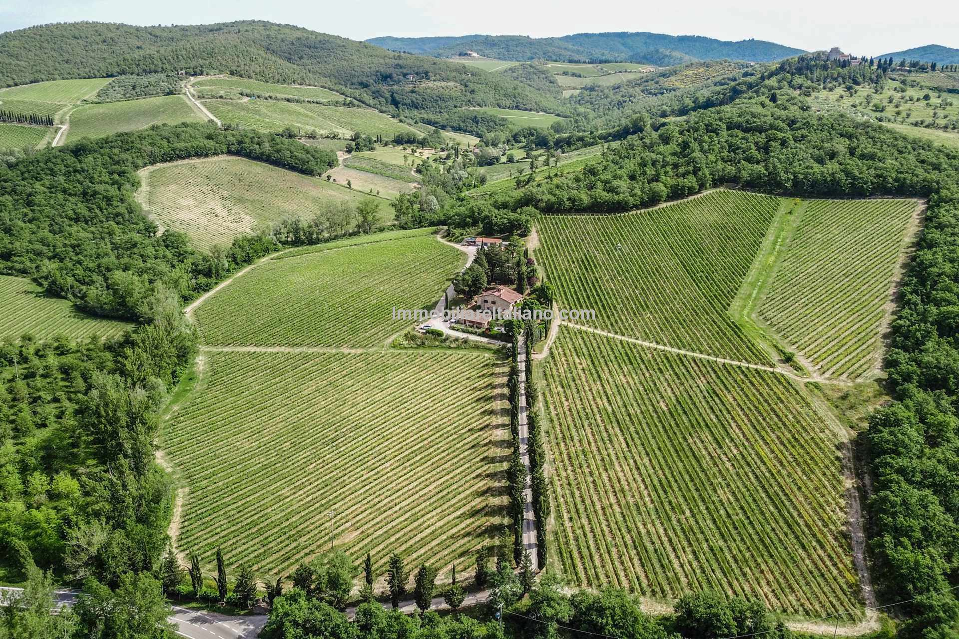 Organic Wine Estate, specialising in Chianti Classico, with Agriturismo and 12 hectares of land for sale in Tuscany. World wide customer base and possible to expand wine production.