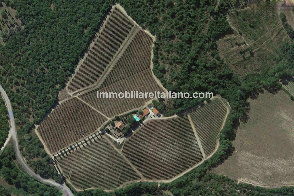 Organic wine estate for sale in Tuscany