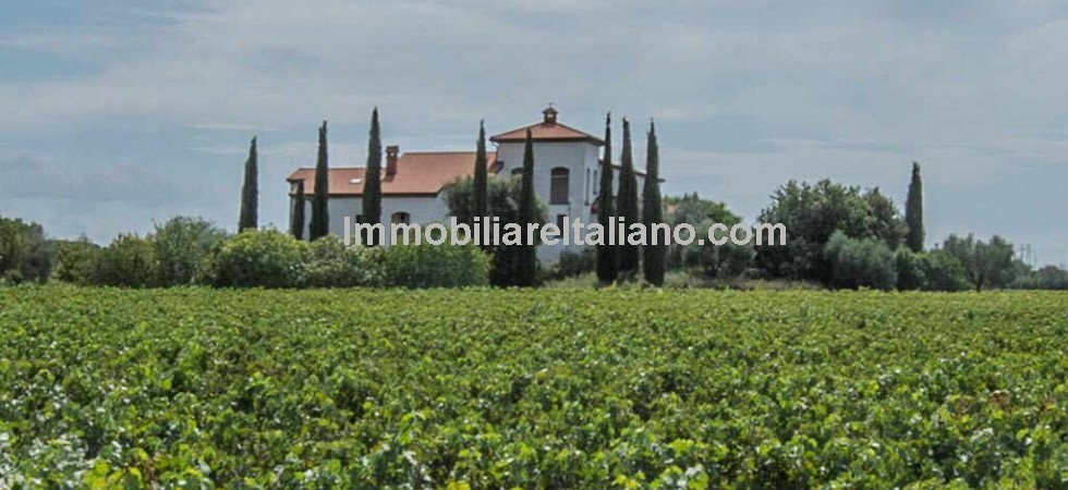 For sale In the province of Livorno Tuscany, wine estate property, needs work but lots of potential and room for expanding the vineyards. 30 hectares of land, of which 13 ha of vineyards and 15 ha of vineyards to be planted, and fully equipped winemaking cellar.