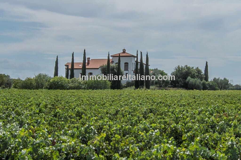 Wine estate property Tuscany