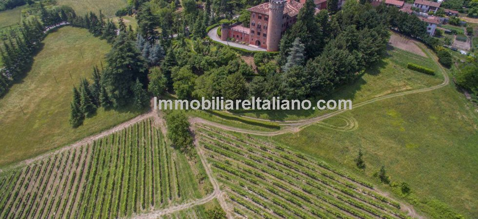 Magical castle property in Italy located in the Piedmont province of Alessandria. Castle with tower, outbuildings and Barbera and Grignolino vineyards. Altogether the property has 23 bedrooms.