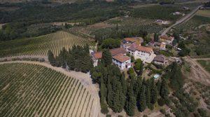 Wine Producer & Vineyard Owner