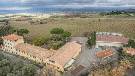 Castelli Romani Winery Near to Rome