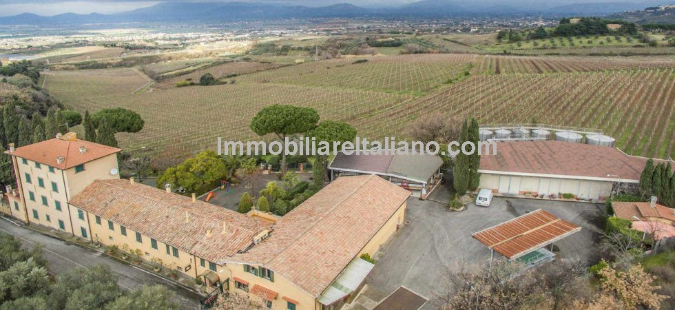 Commercial business opportunity, purchase a winery and farmhouse,stunning views of Rome.Castelli Romani area in Lazio, Monte Porzio Catone.