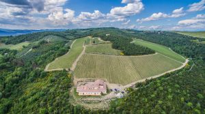Tuscany Organic farm estate