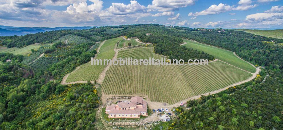 Tuscany Organic farm estate with vineyard, olive grove and woodland. Modern living accommodation and buildings. Potential for expansion of accommodation and vineyards.