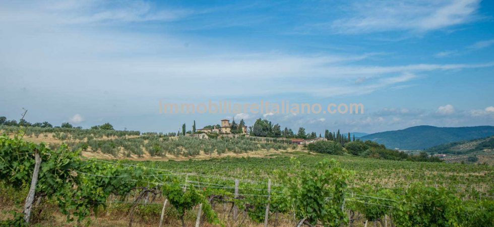 If you are looking for a business opportunity in Italy then this commercial property in Tuscany offers a working wine and olive business with further development potential.