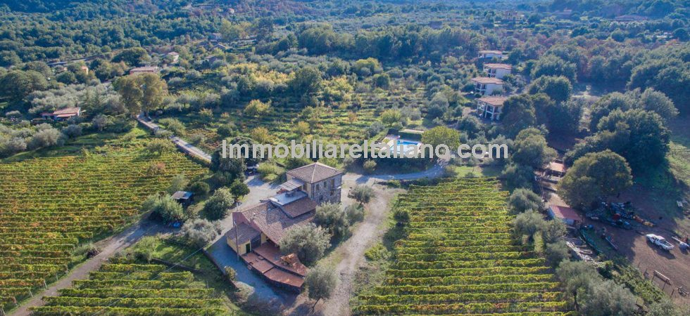 This Sicilian property for sale is an offer you can't refuse. Lovely lifestyle property. Sun, wine, lemons and Olives. Estate, Agriturismo and Etna DOC vineyard.