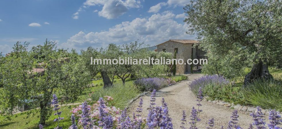 Farmhouse for sale in Italy, in Umbria a couple of miles from Tuscany. Lovely restored picture postcard property. 526 square metres (5662 square feet) 3-bed farmhouse with 1-bed dependence, 3.8 hectares (9.3 acres) of fenced land with small olive grove and lovely gardens with swimming pool and tennis court.