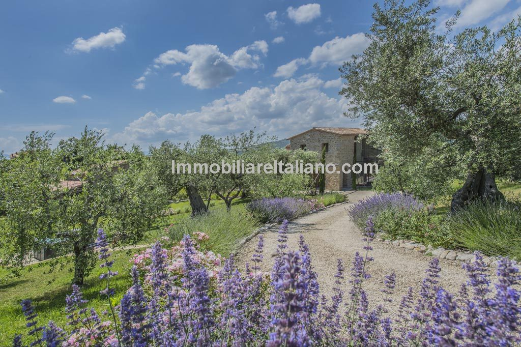 Farmhouse for sale in Italy