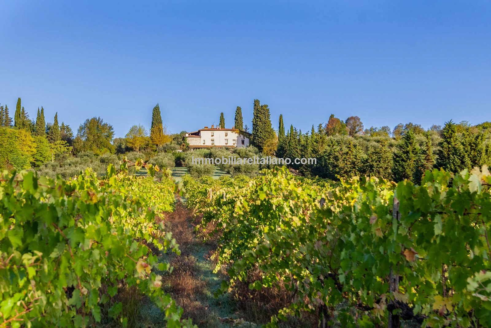 Priced to sell. Tourist and farm business in Tuscany Italy for sale. Agriturismo with 11 bedrooms overall, gardens, swimming pool