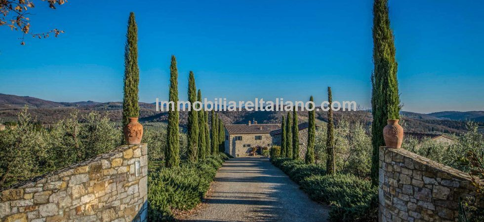 Tuscan vineyard property. Restored hamlet with cellar and Chianti Classico DOCG vineyards plus olive grove and potential for B&B /Agriturismo.