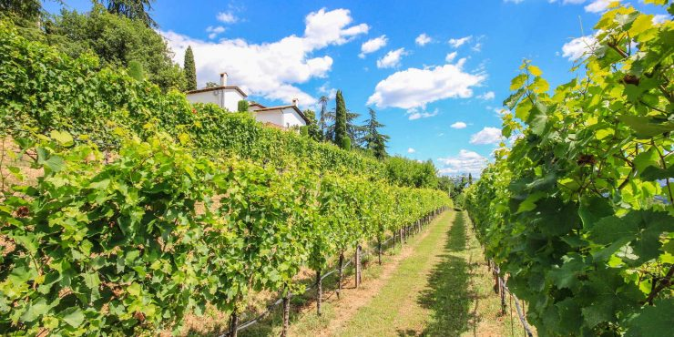 Change your life – Friuli Venezia Giulia
