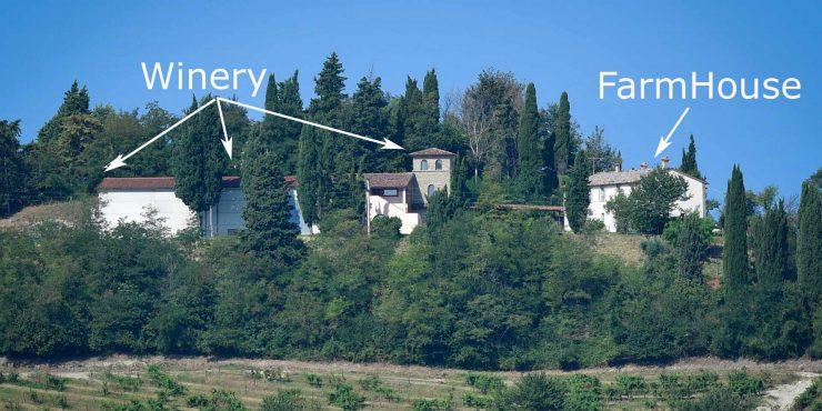 Emilia Romagna Wine estate