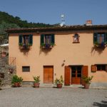 Tuscan country villa, olives, land Castiglion Fiorentino
