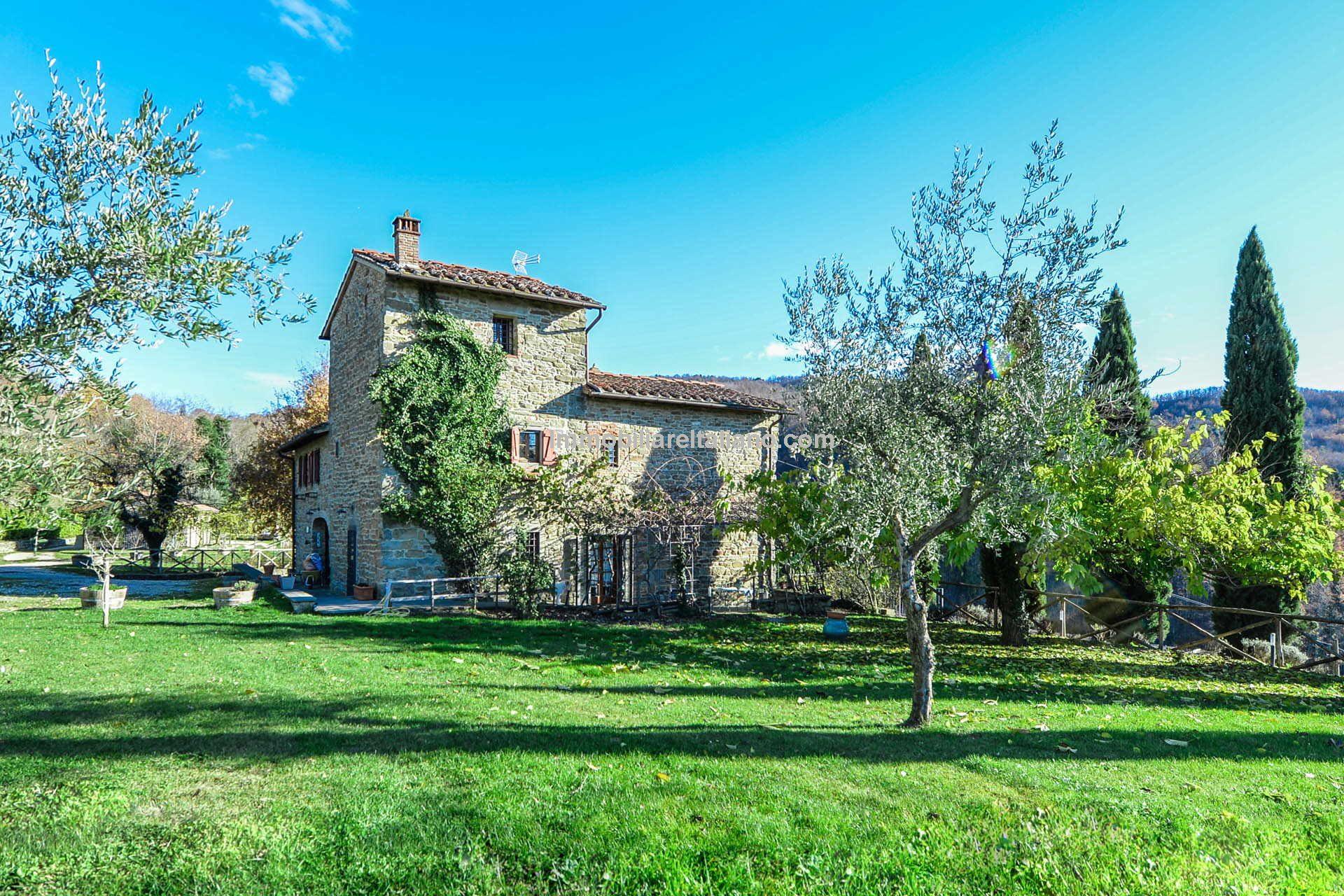 Tuscan organic farm