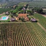 Vineyard and Agriturismo