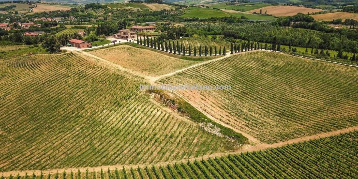 Chianti Wine Property