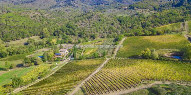 Small wine estate with Agriturismo