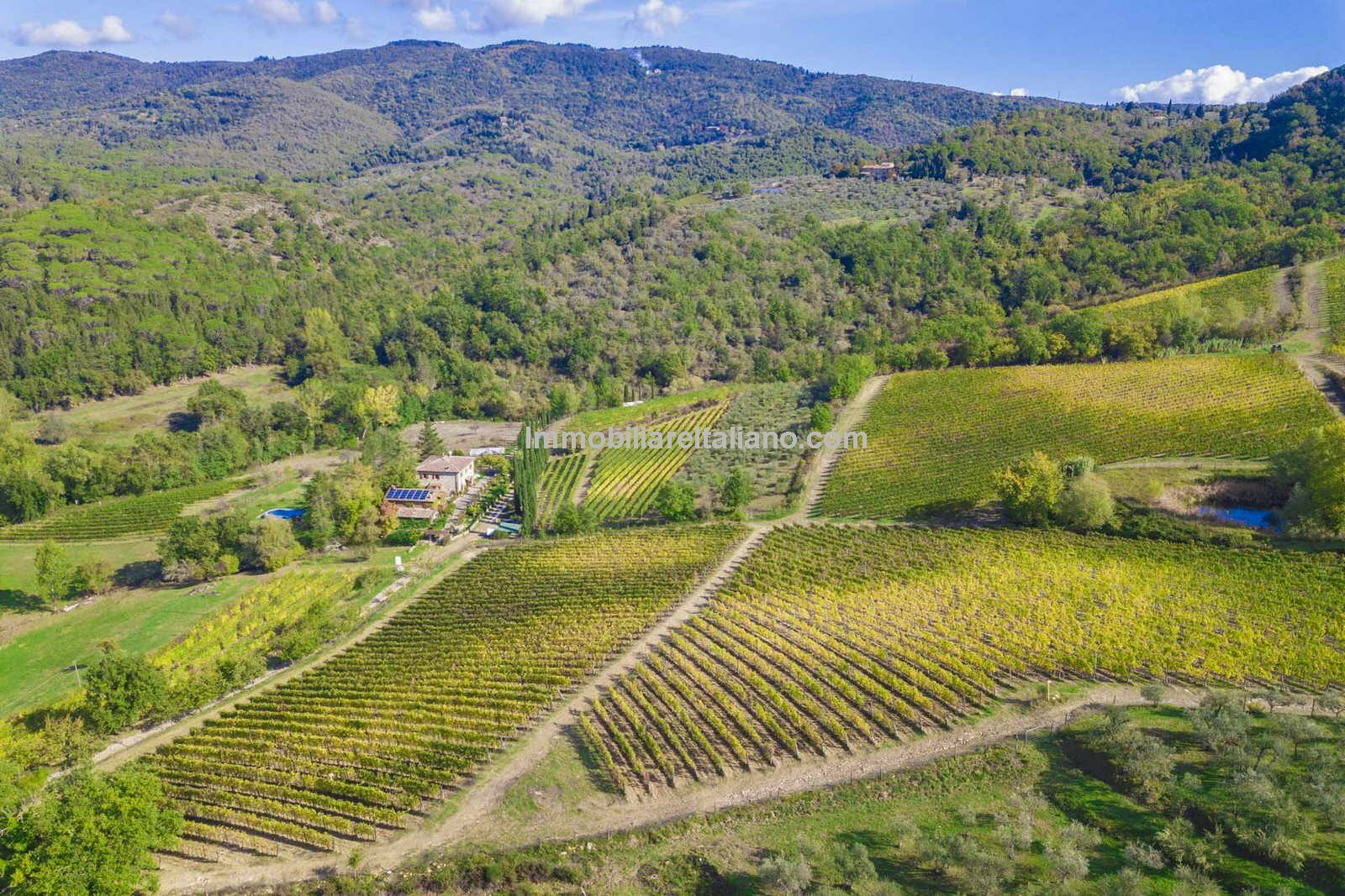 Wine estate for sale in Tuscany