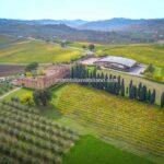 Castle and Wine Estate