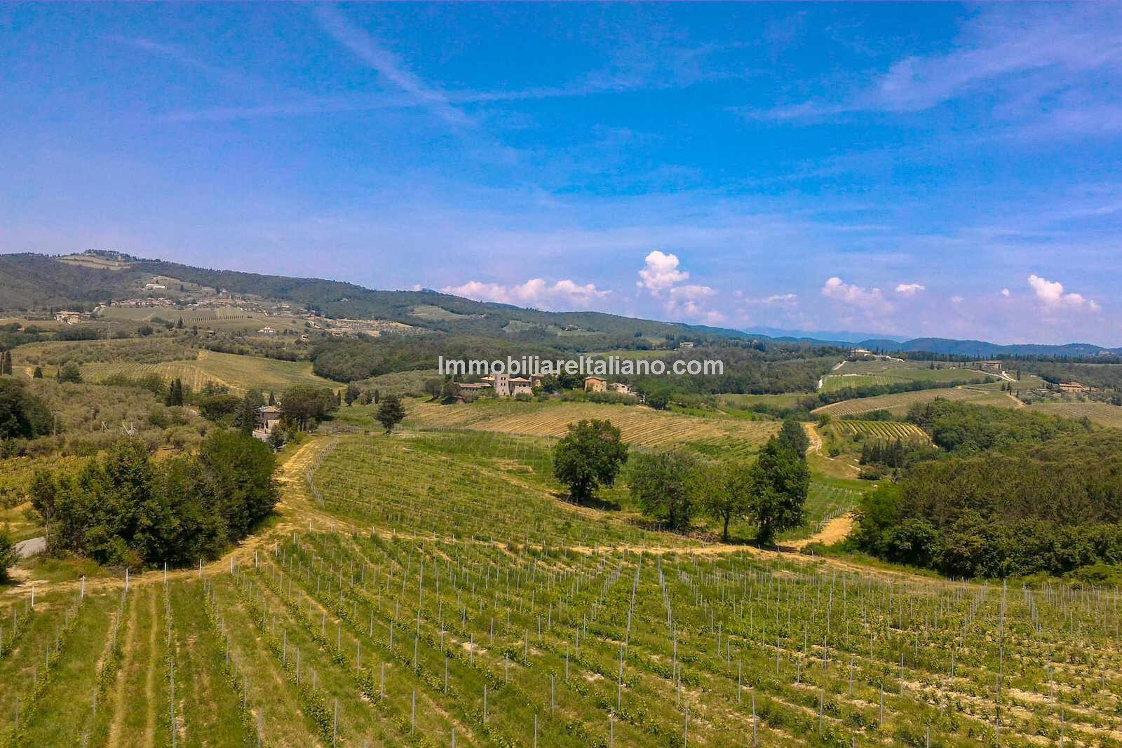 Chianti Vineyard estate for sale in Tuscany